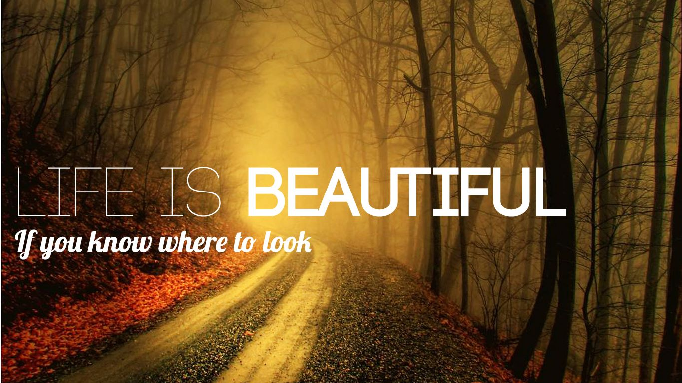 Life Is Beautiful Quotes Life Is Beautiful  Traveling Around The World